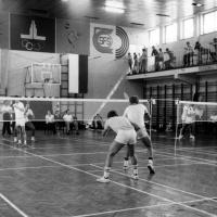 Mecz badmintona Polska-Węgry