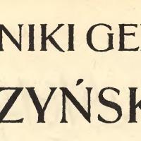 Kanonada w kierunku Stanisławowa